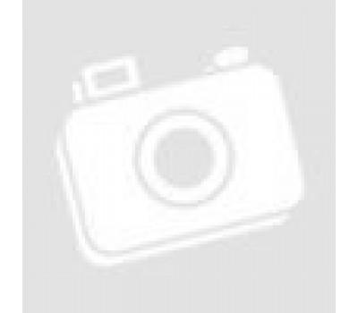 Vitodens 200-W B2HB 26кВт, Vitotronic100